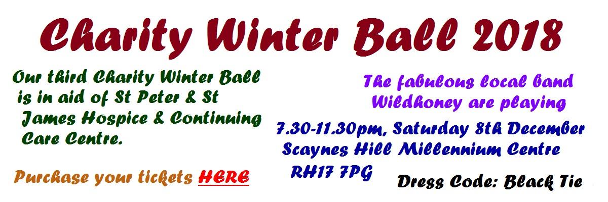 charity-winter-ball-slider